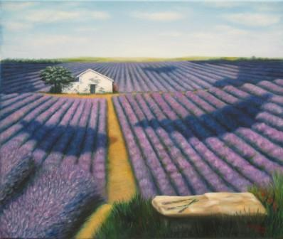 Lavendelfeld mit Bank